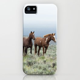 Wild Horses - Steens No. 1 iPhone Case
