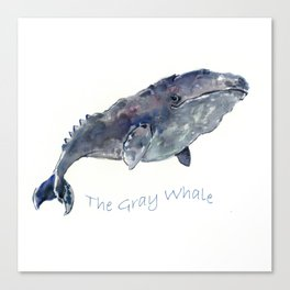 Gray Whale Canvas Print