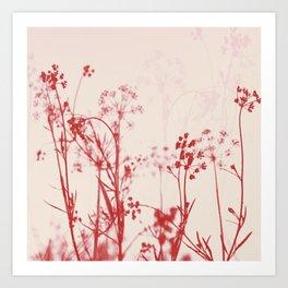 Elegant Coral Pink Botanical Floral Abstract. Art Print