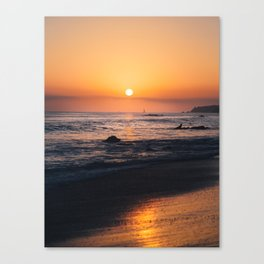 Magnificent Orange. Canvas Print
