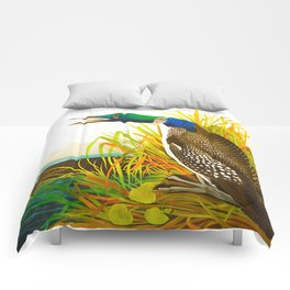 Great Northern Diver or Loon Comforters
