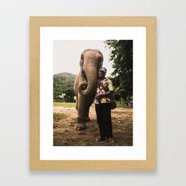 elephant nature park 4 Framed Art Print