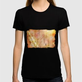summer heat wheat T-shirt