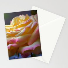 Beautiful Rose 1424 Stationery Cards
