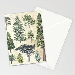 Gymnosperms of Point Reyes National Seashore Stationery Cards