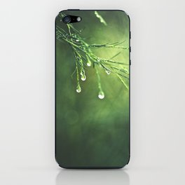 Relic of a Rainy Day iPhone Skin