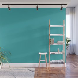 Aqua / Teal / Turquoise Solid Color Pairs with Sherwin Williams 2020 Trending Color Aquarium SW6767 Wall Mural