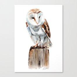 Barn Owl - Watercolour Painting Canvas Print
