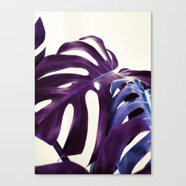 plant3 Canvas Print