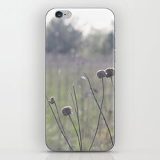 Dew iPhone & iPod Skin