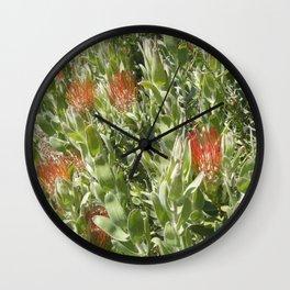 Proteas Wall Clock