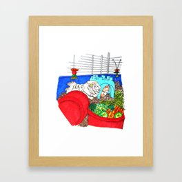 Guinea Pigs In A Cage Framed Art Print