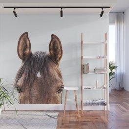 peekaboo horse, bw horse print, horse photo, equestrian, equestrian photo, equestrian decor Wall Mural