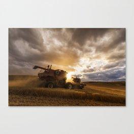 Under Threatening Skies Canvas Print