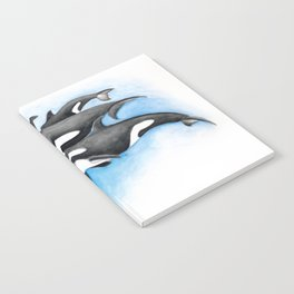 Orca Whales Pod Notebook