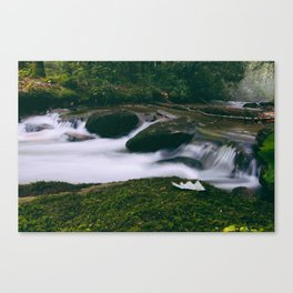Summers Creek Canvas Print