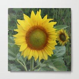 Field of a Million Sunflowers II Metal Print
