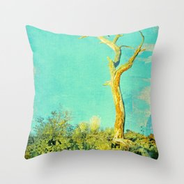 And still I stand Throw Pillow