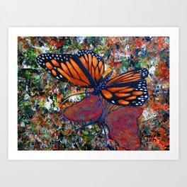 Butterfly-7 Art Print