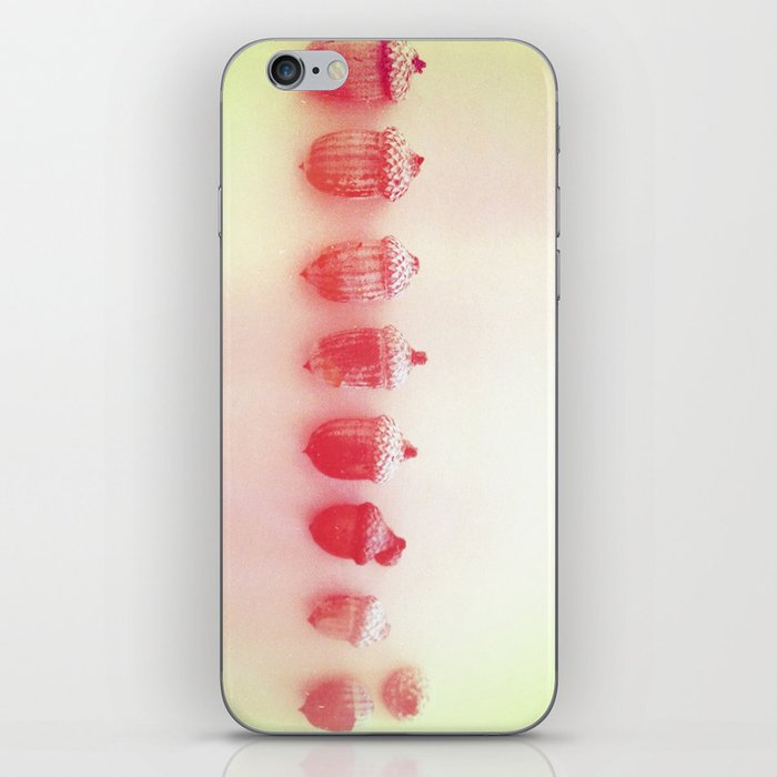 Acorn Collection iPhone Skin