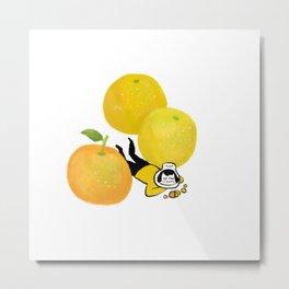 Citrus day Metal Print