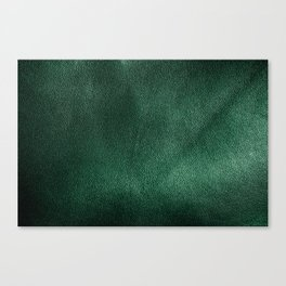 Leather*Trompe l'oeil Canvas Print