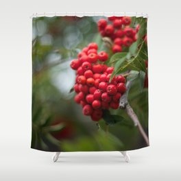 Rosy Red Berries Shower Curtain