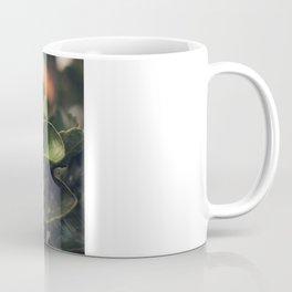 Capullo de Hibisco - Hibiscus bud Coffee Mug