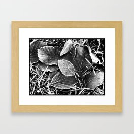 Frosty Leaves Framed Art Print