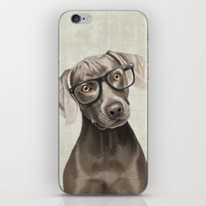 Mr Weimaraner iPhone & iPod Skin