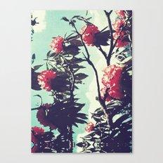 Turquoise Jewels Canvas Print