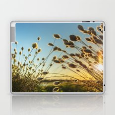 Cotton grass from the high moorland Laptop & iPad Skin