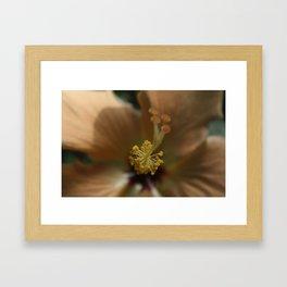 Another flower Framed Art Print