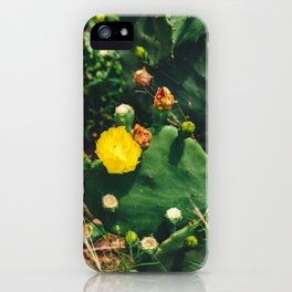 Gimme All Your Love iPhone Case