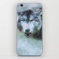 The Leader of the Pack iPhone & iPod Skin