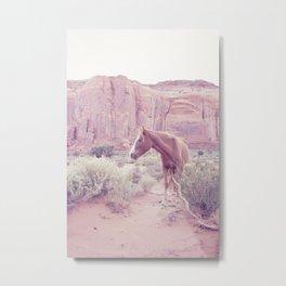 Monument Valley III Metal Print