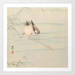 Wild duck, the head under water - Ohara Koson (1900-1930) Art Print