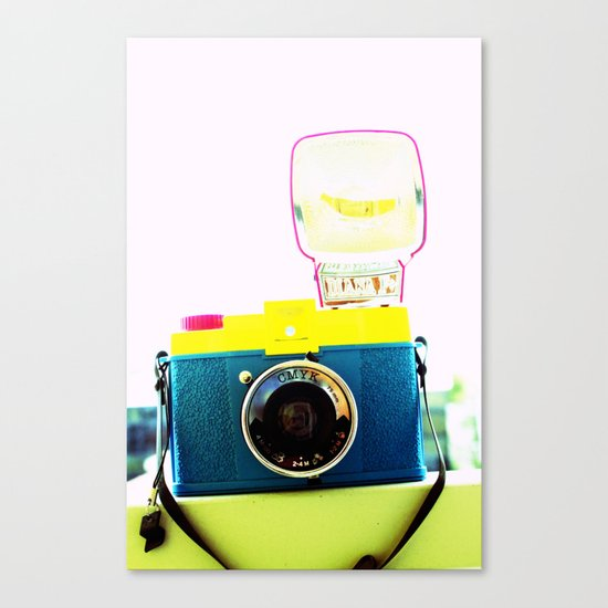 In the flash! Canvas Print