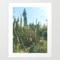 jardim da estrela II Art Print