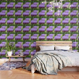 Bee-utiful Wallpaper