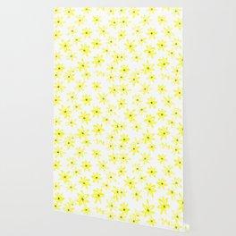Yellow daisy flowers Wallpaper