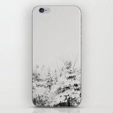 Winter Grey iPhone & iPod Skin