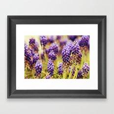 Floral 04 Framed Art Print