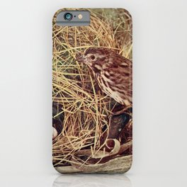 Vintage Print - Birds and Nature (1897) - Song Sparrow iPhone Case