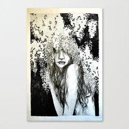 Wysteria Canvas Print