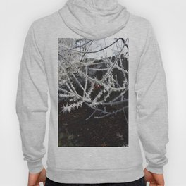 Frost Spiked Crabapple Tree Hoody