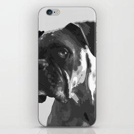 Boxer Graphic iPhone Skin