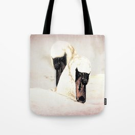 Dreamy Swans A304 Tote Bag
