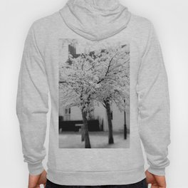 Candy Floss Explosion Monochrome Hoody