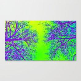 Rainbow Trees of Life Canvas Print